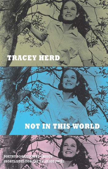 Not in This World ebook by Tracey Herd