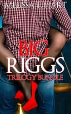 Big Riggs (Trilogy Bundle) (BBW Erotic Romance) ebook by Melissa F. Hart