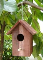 How To Build Bird Houses: A Guide For Beginners ebook by Pablo Swanson