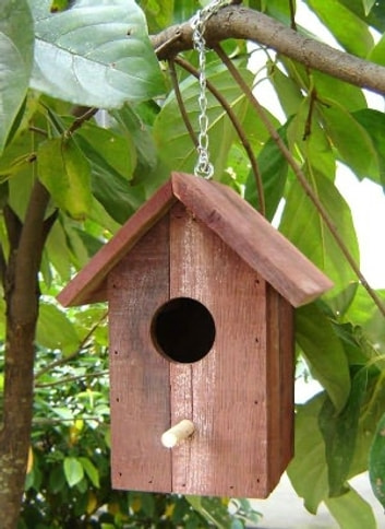 Stupendous How To Build Bird Houses A Guide For Beginners Download Free Architecture Designs Scobabritishbridgeorg