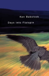 Days Into Flatspin ebook by Ken Babstock