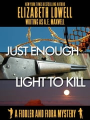 Just Enough Light to Kill ebook by Elizabeth   Lowell