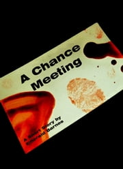 A Chance Meeting: A Short Story ebook by Emerald Barnes