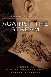 Against the Stream ebook by Noah Levine