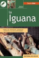 La iguana ebook by Massimo Millefanti