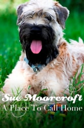 A Place to Call Home ebook by Sue Moorcroft