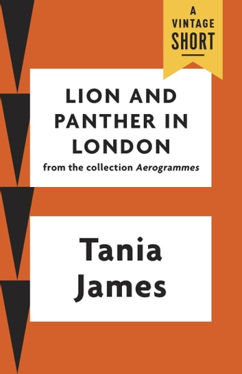 Lion and Panther in London ebook by Tania James