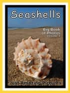Just Seashell Photos! Big Book of Photographs & Pictures of Ocean Seashells, Vol. 1 ebook by Big Book of Photos