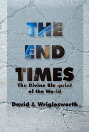 The End Times - The Divine Blueprint of the World ebook by David J. Wriglesworth
