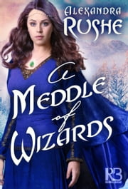 A Meddle of Wizards ebook by Alexandra Rushe