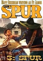 Spur (A Sam Spur Western Book 3) ebook by Matt Chisholm