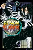 Demon Slayer: Kimetsu no Yaiba, Vol. 19 - Flapping Butterfly Wings ebook by Koyoharu Gotouge