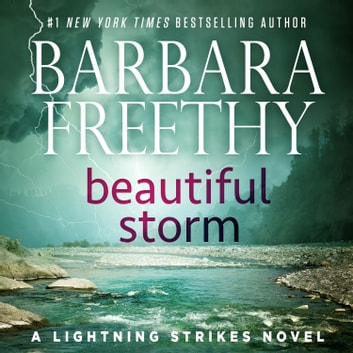 Beautiful Storm audiobook by Barbara Freethy