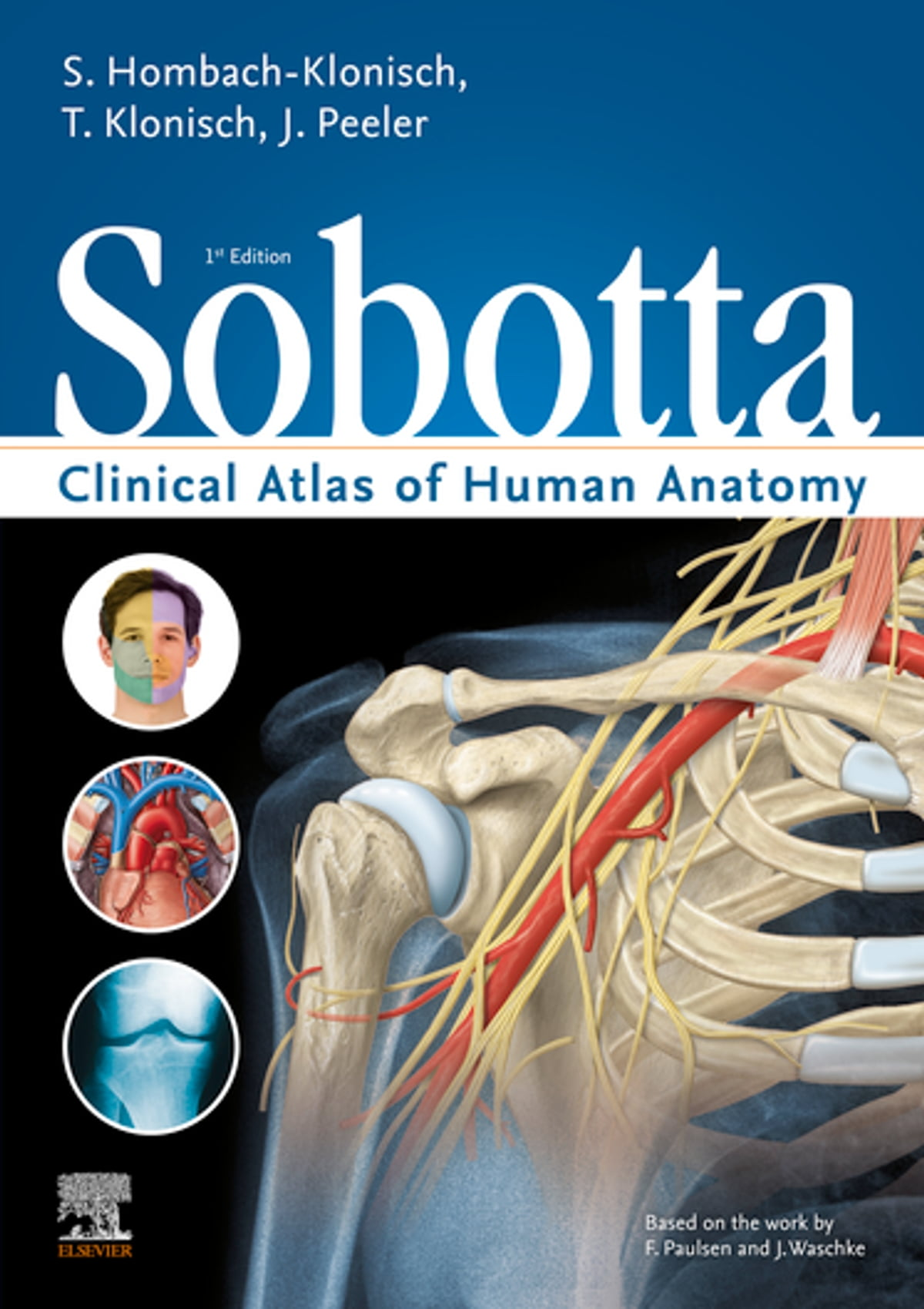 Sobotta Clinical Atlas of Human Anatomy, one volume, English ebook by -  Rakuten Kobo