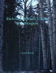 Delving Within Using Meditation ebook by Tami Brady