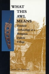 What This Awl Means: Feminist Archaeology at a Wahpeton Dakota Village ebook by Janet Specter
