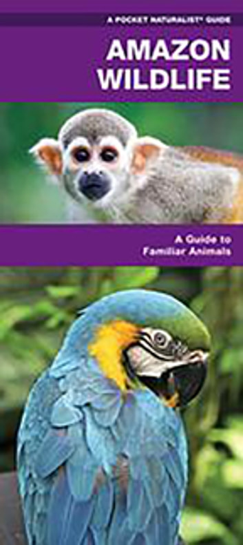 Amazon Wildlife - A Waterproof Pocket Guide to Familiar Species ebook by James Kavanagh,Waterford Press