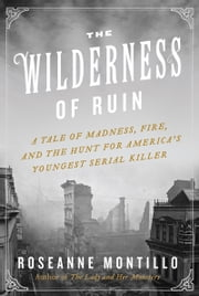 The Wilderness of Ruin - A Tale of Madness, Fire, and the Hunt for America's Youngest Serial Killer ebook by Roseanne Montillo