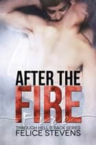 After the Fire eBook by Felice Stevens