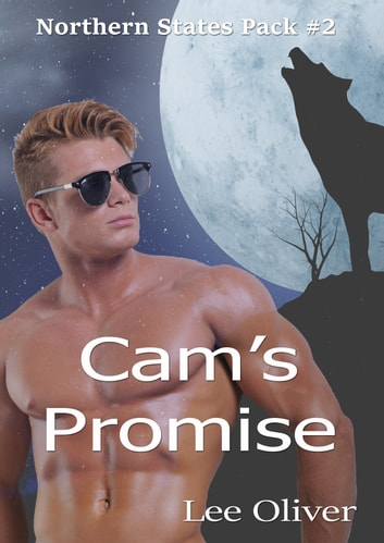 Cam's Promise ebook by Lee Oliver