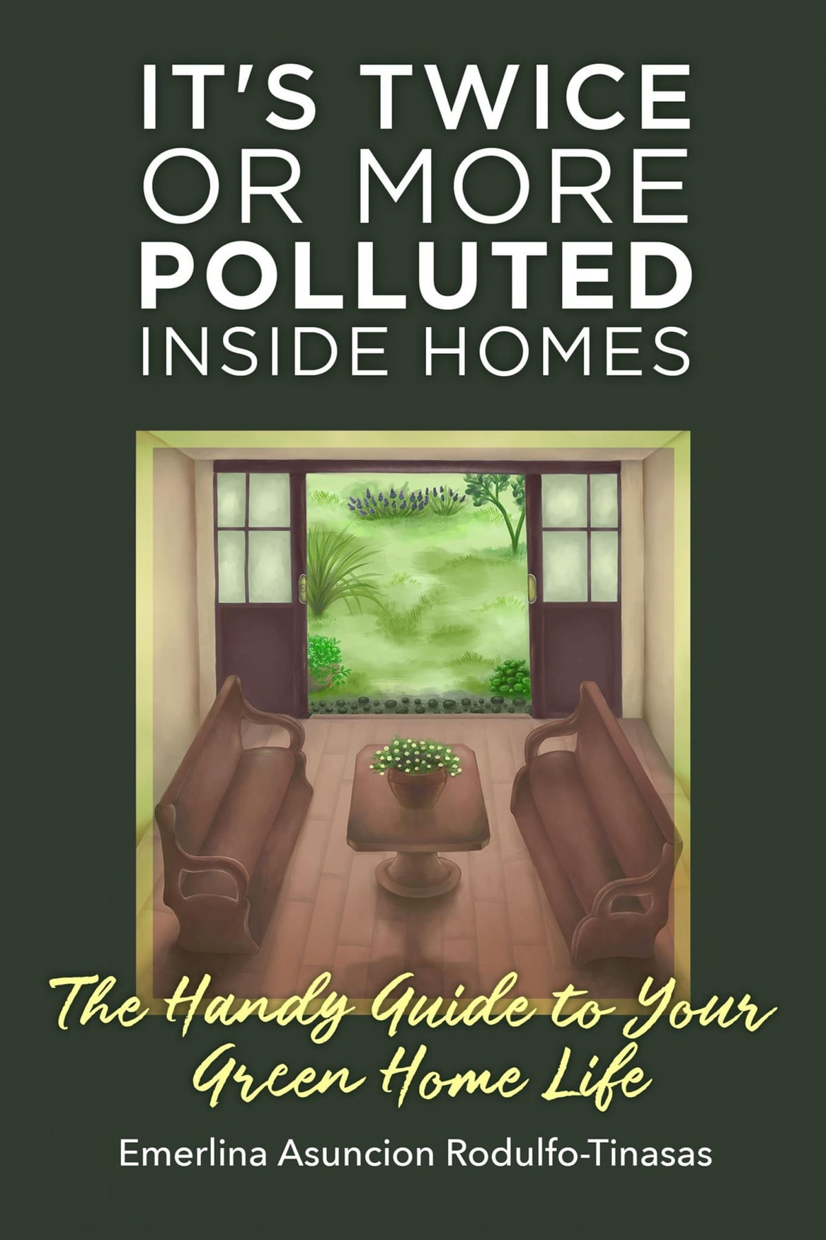 It S Twice Or More Polluted Inside Homes Ebook By Emerlina