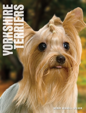Your Yorkshire Terrier ebook by Wendy Bedwell-Wilson