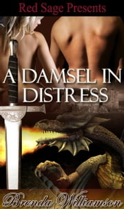 A DAMSEL IN DISTRESS  Dragon Fighter Romance Book 1 ebook by WILLIAMSON, BRENDA