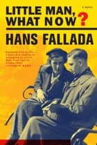 Little Man, What Now? ebook by Hans Fallada,Susan Bennett