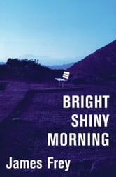 Bright Shiny Morning ebook by James Frey