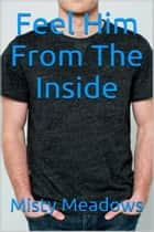 Feel Him From The Inside (Gay Romance, First Time) ebook by Misty Meadows