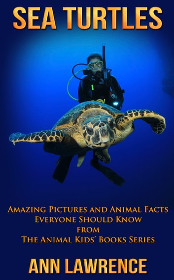 Sea Turtles: Amazing Pictures and Animal Facts Everyone Should Know ebook by Ann Lawrence
