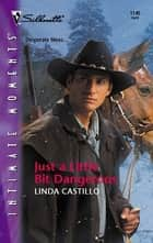Just a Little Bit Dangerous ebook by Linda Castillo