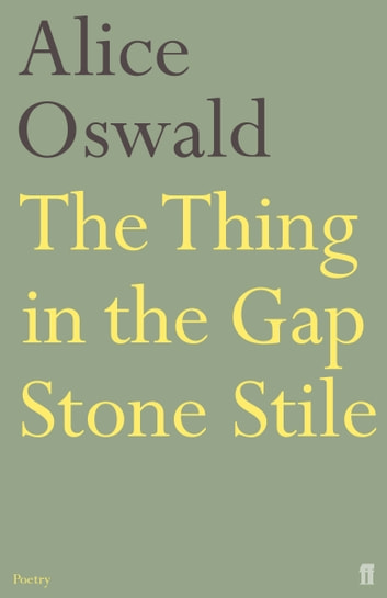 The Thing in the Gap Stone Stile ebook by Alice Oswald