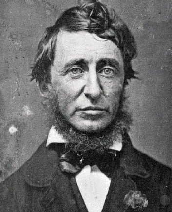 Walden and On the Duty of Civil Disobedience ebook by Henry David Thoreau