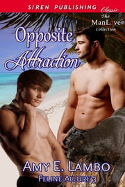 Opposite Attraction ebook by Amy E. Lambo
