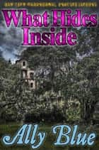 What Hides Inside (Bay City Paranormal Investigations book 2) ebook by Ally Blue