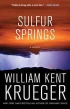 Sulfur Springs - A Novel ebook by