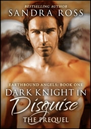 Dark Knight in Disguise, The Prequel ebook by Sandra Ross