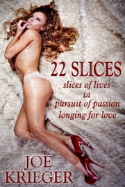 22 Slices ebook by Joe Krieger
