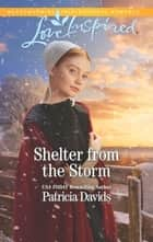 Shelter from the Storm - A Fresh-Start Family Romance ebook by Patricia Davids