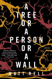 A Tree or a Person or a Wall - Stories eBook by Matt Bell