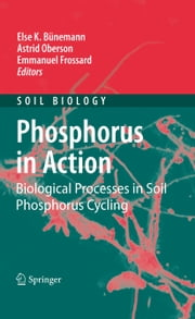 Phosphorus in Action - Biological Processes in Soil Phosphorus Cycling ebook by