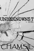 Unbeknownst ebook by Chamsil