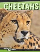 Cheetahs ebook by Tammy Ann Gagne