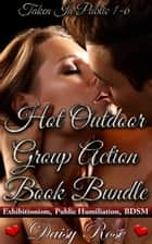 Hot Outdoor Group Action Book Bundle - Taken In Public ebook by Daisy Rose