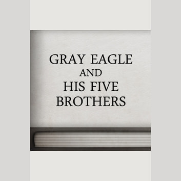 Gray Eagle and his Five Brothers audiobook by unknown