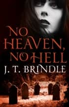 No Heaven, No Hell ebook by J.T. Brindle