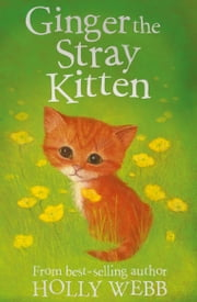 Ginger the Stray Kitten ebook by Holly Webb, Sophy Williams