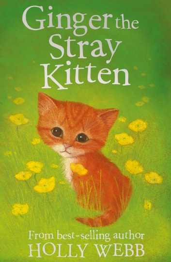 Ginger the Stray Kitten ebook by Holly Webb