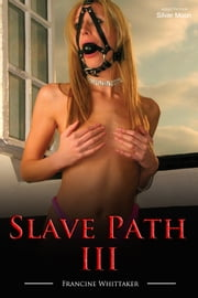 Slave Path III - Into the Chasm ebook by Francine Whittaker